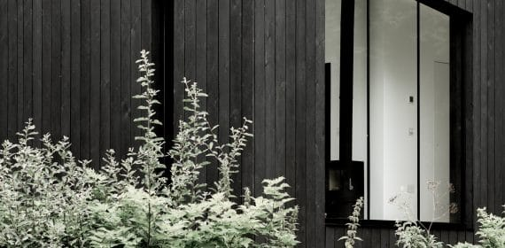 Close up shot of charred timber cladding used on a cabin surrounded by plants